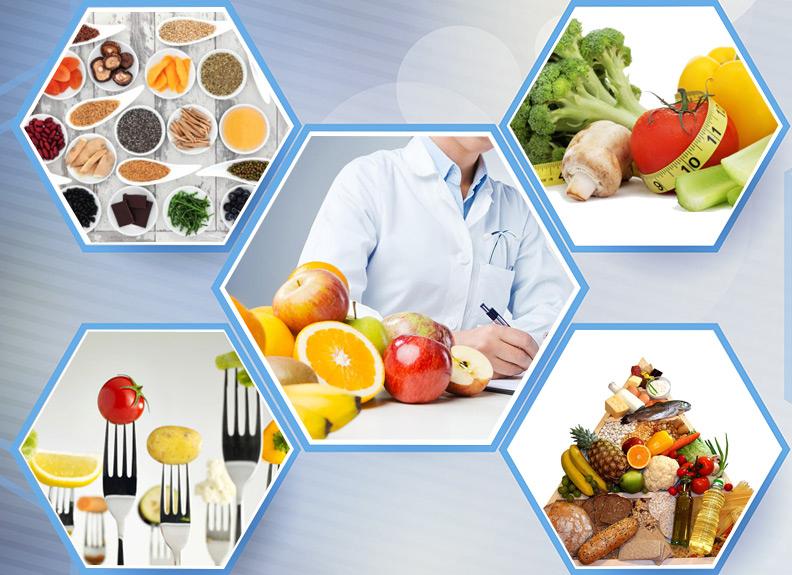 Alimentos E Nutricao